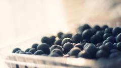 Blueberries 20410