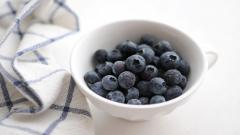 Blueberry Background 20407