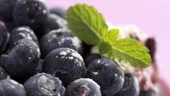 Blueberry Wallpaper 20405