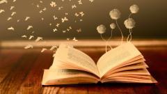 Book Wallpaper 22145