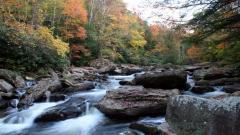 Creek Pictures 31418