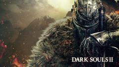 Dark Souls 2 14173