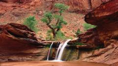 Desert Stream 34867
