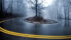Foggy 31393