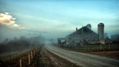 Foggy Background 31384