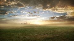 Foggy Landscape 31387
