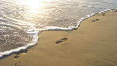 Footprints 38248