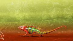 Free Chameleon Wallpaper 23632