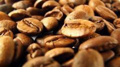 Free Coffee Beans Wallpaper 42405
