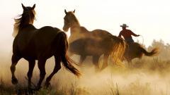 Free Cowboy Wallpaper 25075