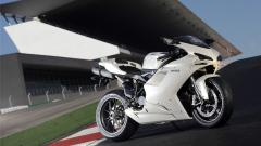 Free Ducati Wallpaper 22376