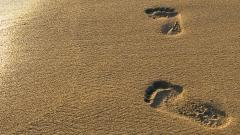 Free Footprints Wallpaper 38244