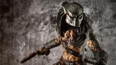 Free Predator Wallpaper 40469