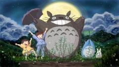 Free Totoro Wallpaper 27970