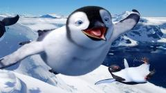 Happy Feet 32411