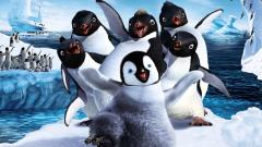 Happy Feet Wallpaper 32410