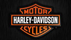 Harley Davidson Logo Wallpaper 16891