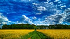 HDR Nature Wallpapers 38285