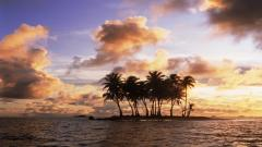 Island Pictures 27178