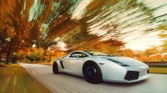 Lamborghini Gallardo Pictures 30055