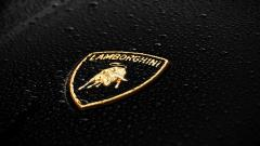 Lamborghini Logo 22336