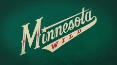 Minnesota Wild 18024