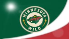 Minnesota Wild Wallpaper 18019