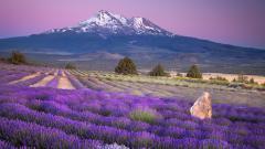 Mt Fuji Wallpaper 34456