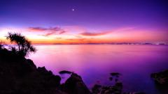Mystic Landscape 31301