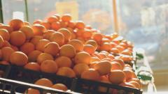 Oranges Wallpaper 27811