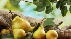 Pears 40212