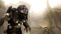 Predator Wallpaper 40471