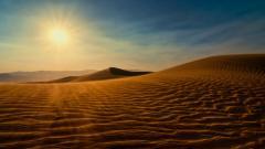 Sahara Desert 28976