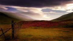 Scotland 26293