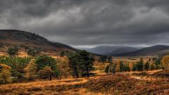 Scotland 26296