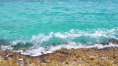 Sea Water 33449