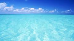 Sea Water 33450