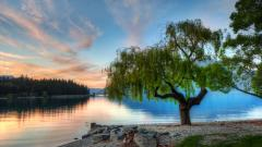 Serene Background 33199