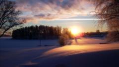 Serene Sunset 33194