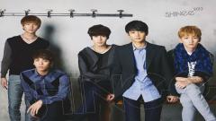 Shinee 10532