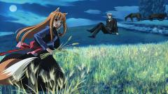 Spice And Wolf 20413