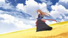 Spice And Wolf 20418