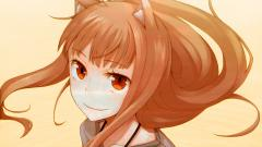 Spice And Wolf Wallpaper 20412