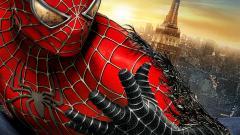 Spiderman Wallpaper 4616