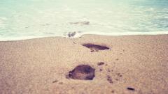 Stunning Footprints Wallpaper HD 38249