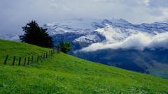 Switzerland Background 26961