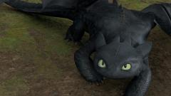 Toothless Dragon Pictures 31129