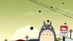 Totoro Wallpaper 27969