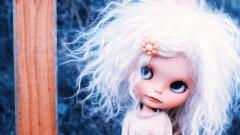 Toy Doll Wallpaper 42428