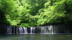 Waterfall 19632